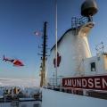 Amundsen Ice-1