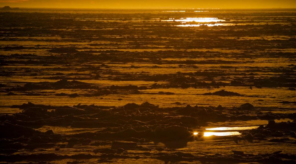 Amundsen Ice-13