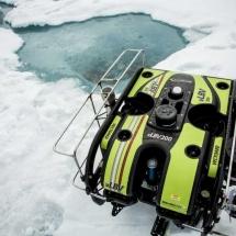 The ROV