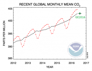 Figure1: Global CO2 concentration is rising